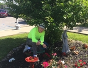 Howard Thompson volunteers once or twice a month to help maintain the grounds at Hospice Care Plus. Hospice is training a new group of volunteers on Sept. 29, and especially encourages men and veterans to attend.